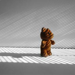 photography teddybear tyni shadows shapes freetoedit