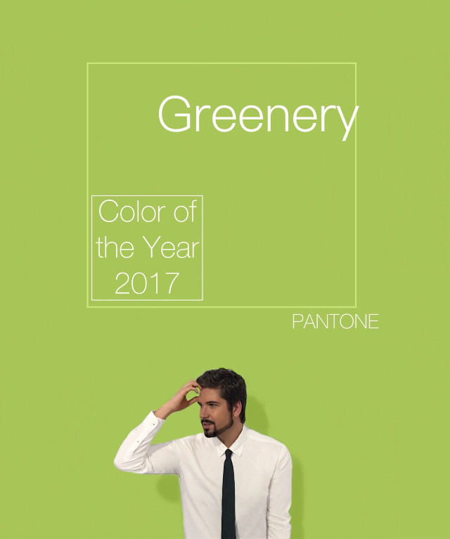 Color of the year 2017 by Pantone! Greenery🍏 Do you like?