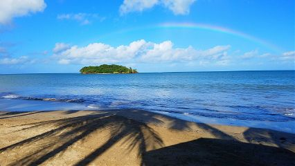 saintlucia rainbow coconuttree shadow beach