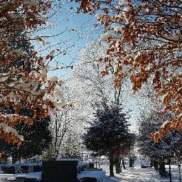 unedited winterwonderland myphoto