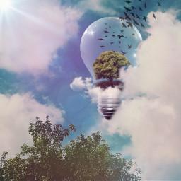 freetoedit remixgallery sky trees nature