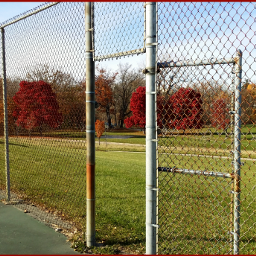 lookingthrough fence autumn myphotography