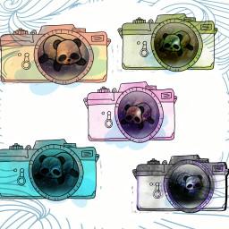 freetoedit cameras dailyremixchallenge creative art