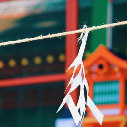 kyoto freetoedit