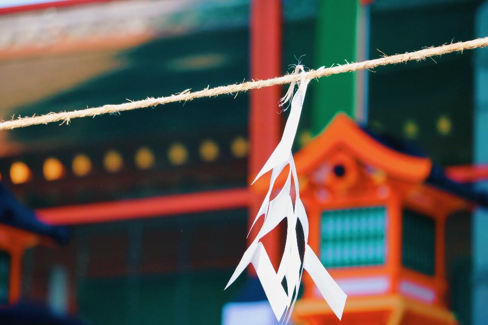 #kyoto #春日大社 #FreeToEdit