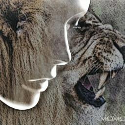 freetoedit wildliferemix myinspiration doubleexposure overlays