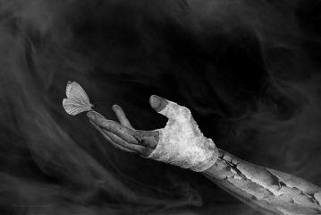 deeliriouss photography darkart mood butterfly