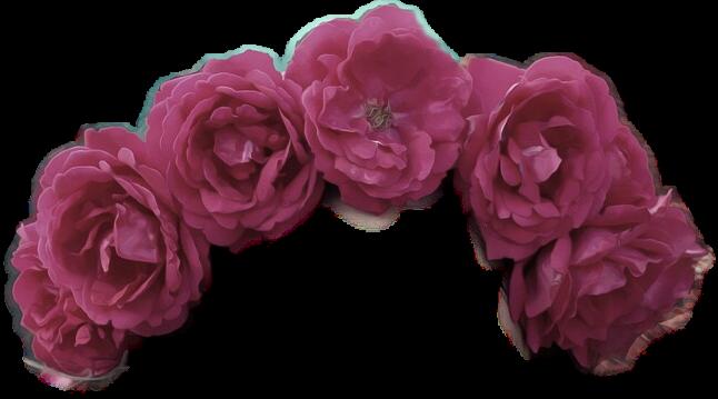 #ftestickers #FreeToEdit  #flowercrown