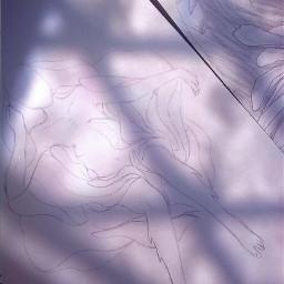 workinprocess ilustrationsketch elfdraw rosedraw sketchbook